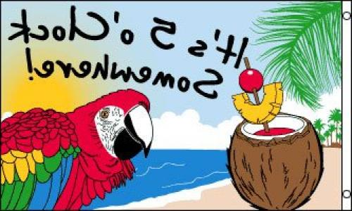 3/'x5/' It/'s 5 O/'Clock Somewhere Party Parrot FLAG
